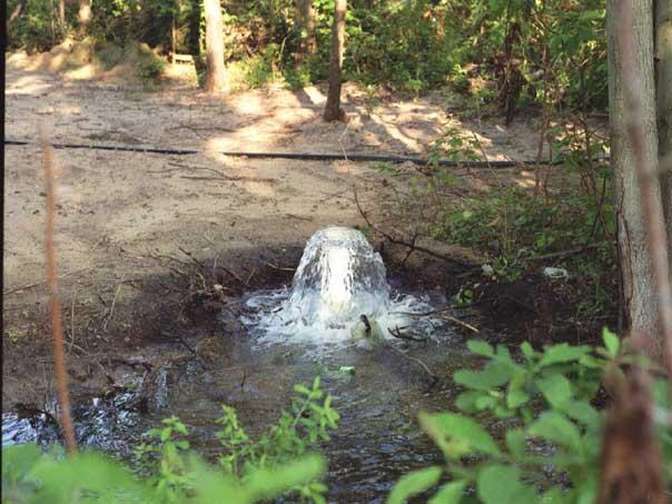 water dowsing india
